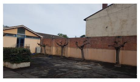 Entreprise spécialisée dans l'élagage d'arbre dans une cour de bâtiment sur Montauban